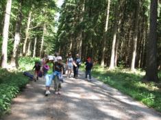 Výuka v lese 4. a 5. r. - DOPRAVNÍ VÝCHOVA
